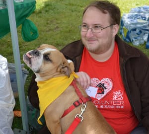 Volunteer at SPCA 3K, a local rescue organization, with dog