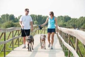 woman and man walking dog