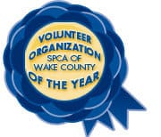 volunteer of the year award