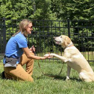 jasey teaching dog to shake